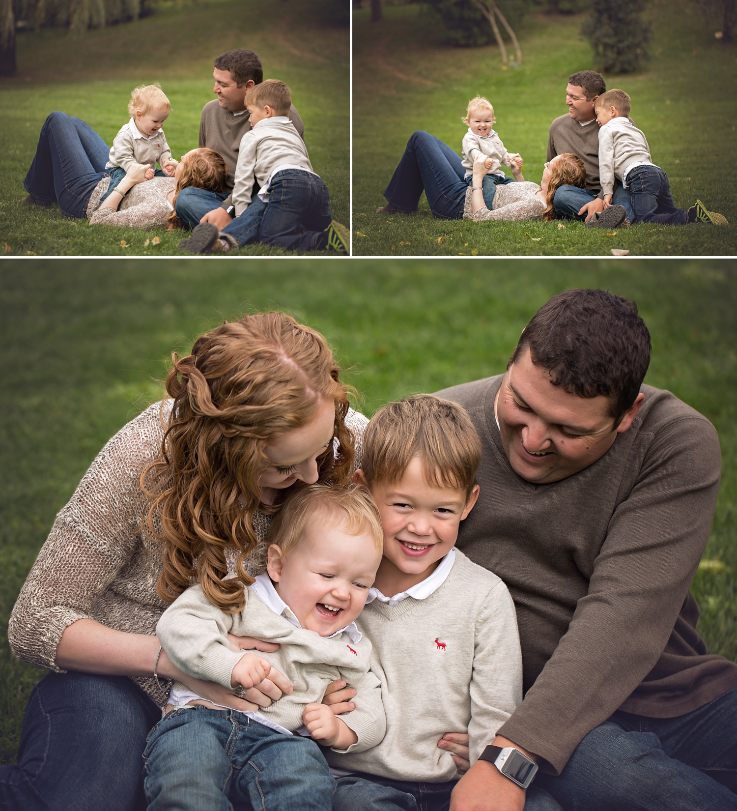 Falco - Barrie Family Photographer 2