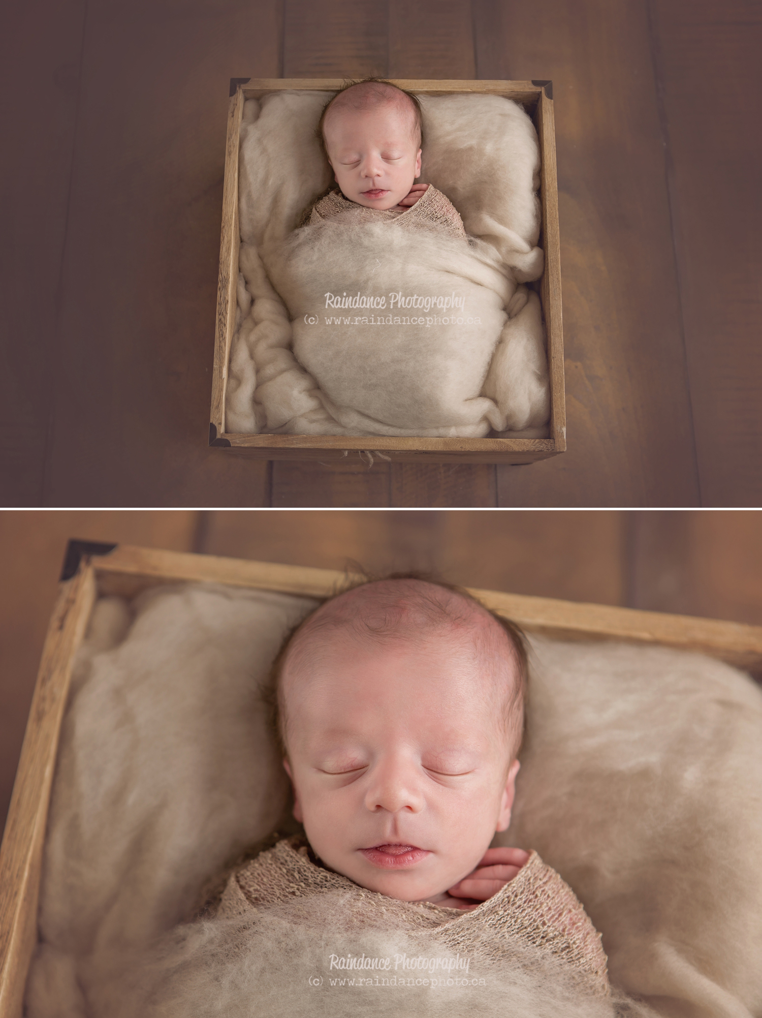 Twin Newborn Session - Barrie Ontario Photographer 3