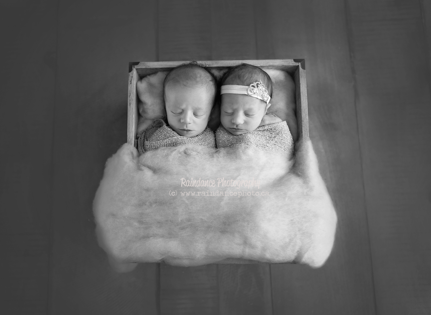 Twin Newborn Session - Barrie Ontario Photographer 4