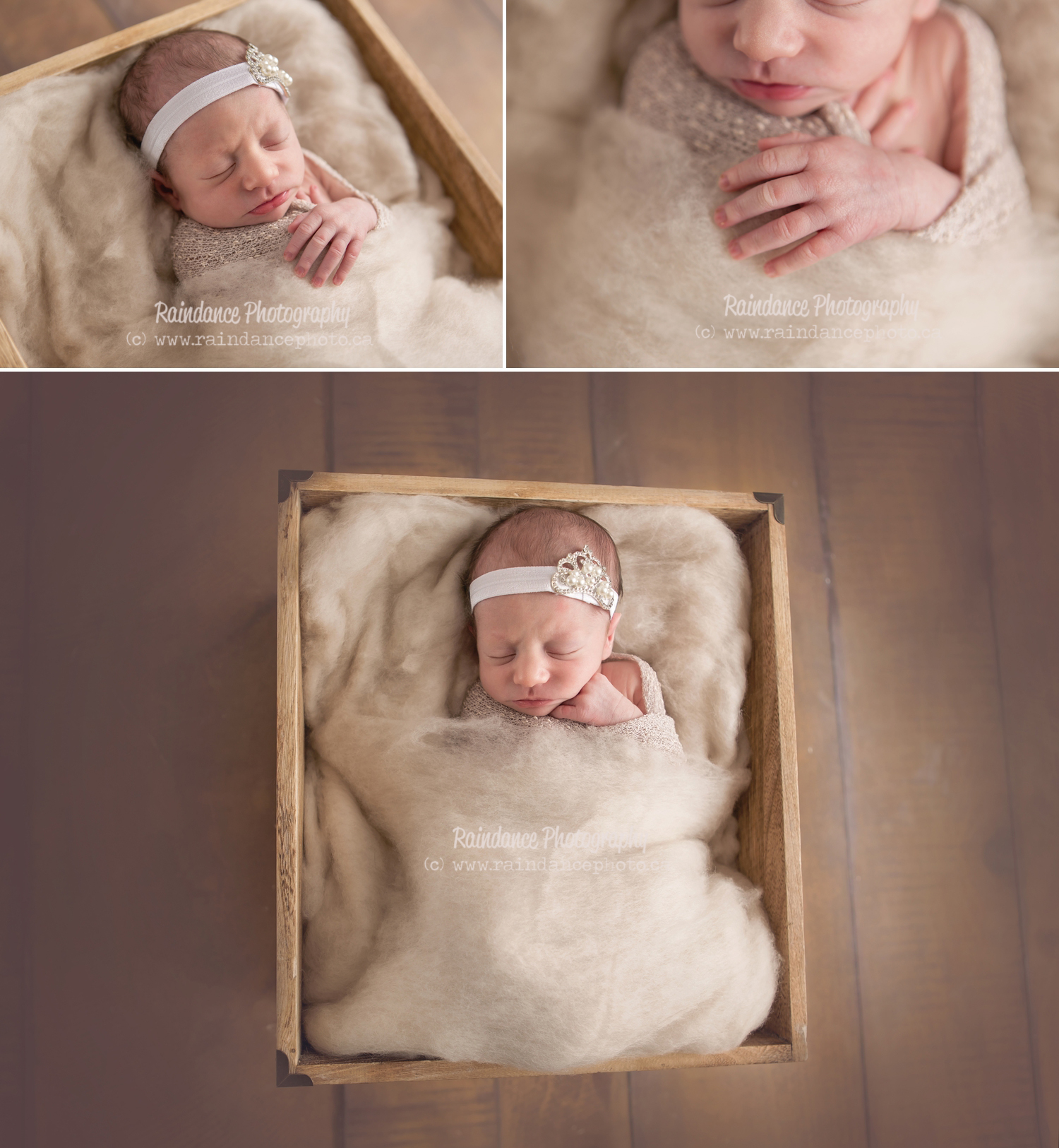 Twin Newborn Session - Barrie Ontario Photographer 5