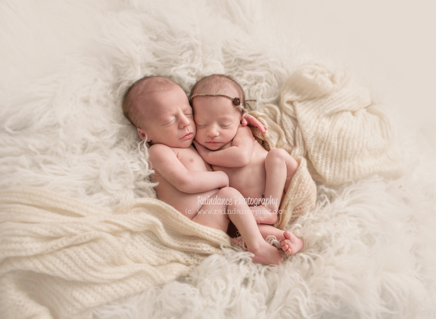 Twin Newborn Session - Barrie Ontario Photographer 7