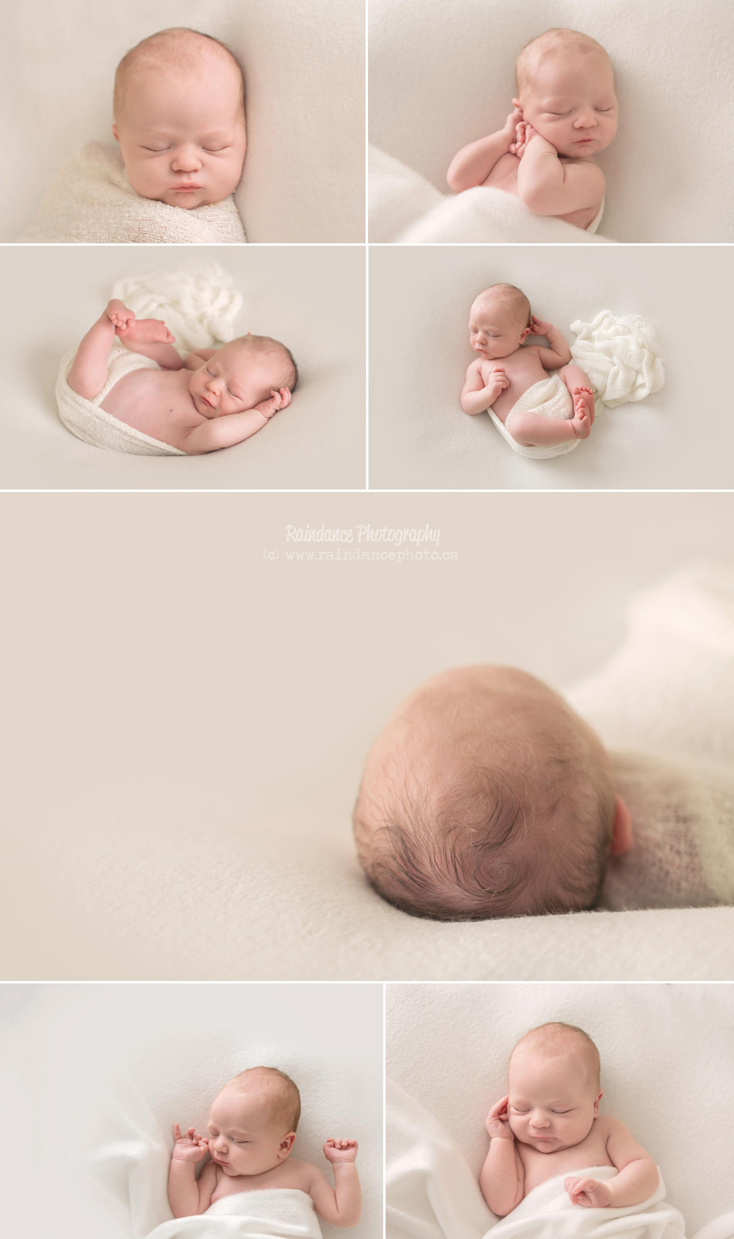 Carson - Barrie Newborn Photographer 4
