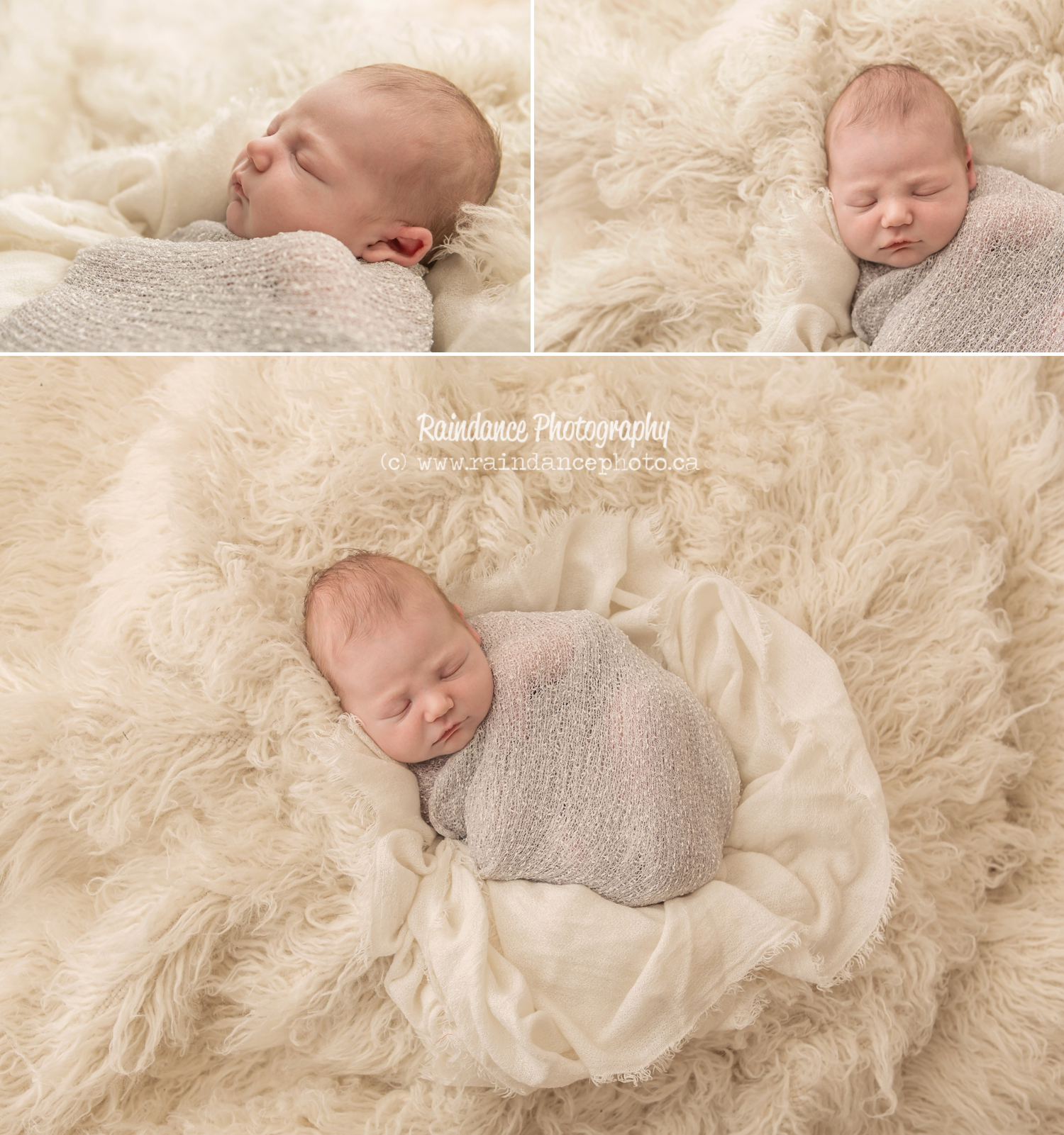 Shea - Barrie Newborn Baby Photographer 5
