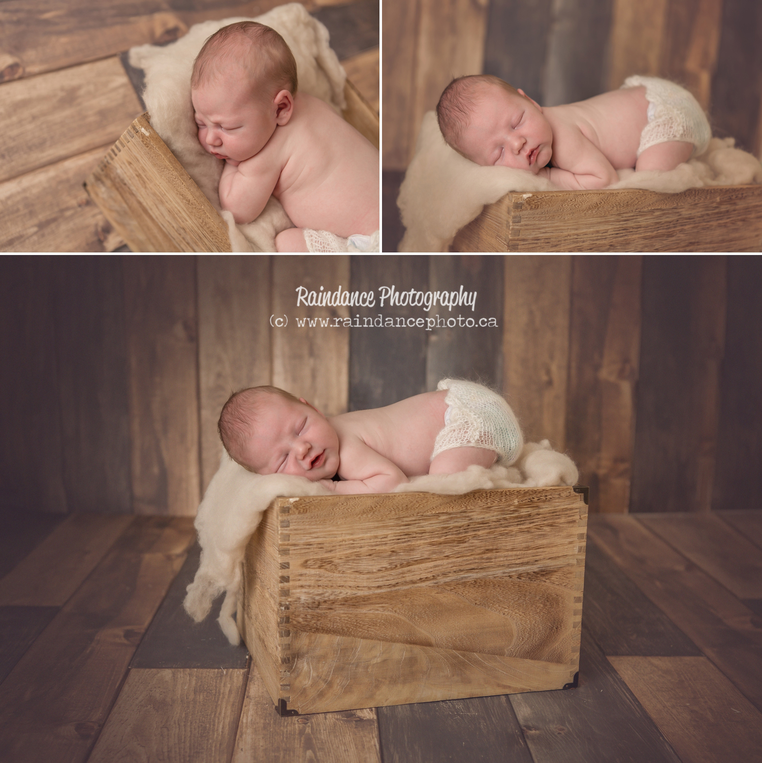 Shea - Barrie Newborn Baby Photographer 9